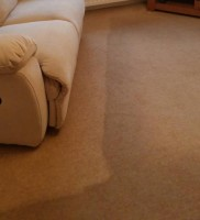 carpet  and upholstery cleaning  1s