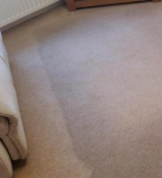 carpet and upholstery cleaning 2s