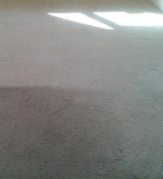 carpet cleaning 2s