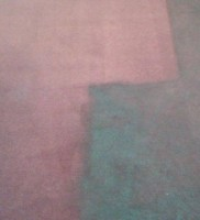 carpet cleaning w1s